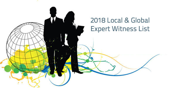 Local And Global Vetted Expert Witnesses